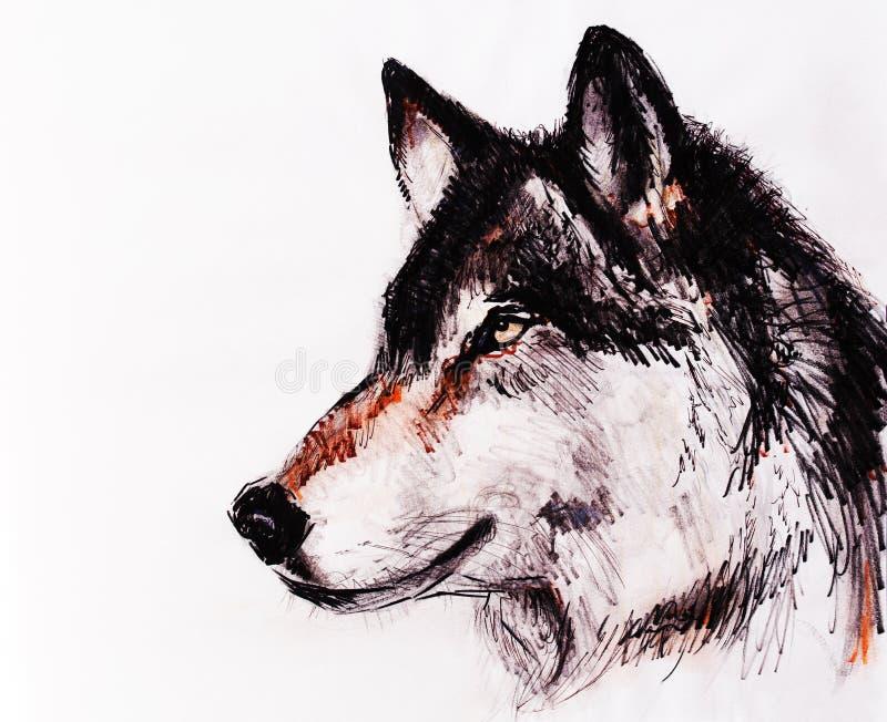 De tekeningswolf op oud document, originele hand trekt stock illustratie