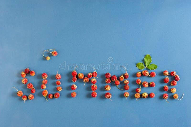 De tekstzomer voerde met aardbeien op een blauwe keramische tegel Een blad over de brief E stock foto's