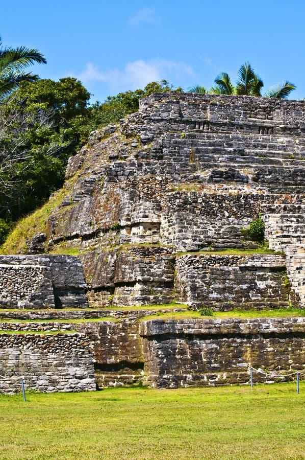 De Tempel van Belize Maya royalty-vrije stock afbeeldingen