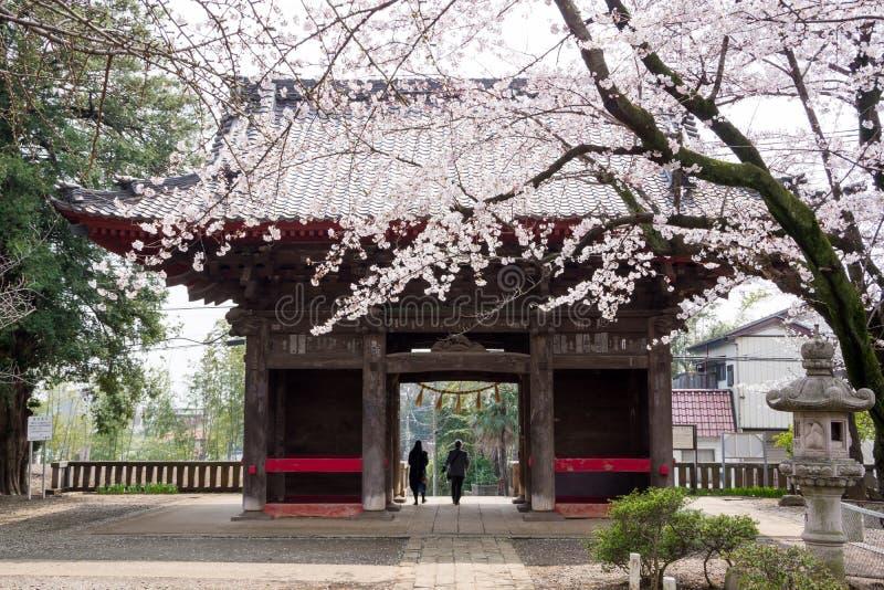 de Tempel van Chiba stock afbeeldingen