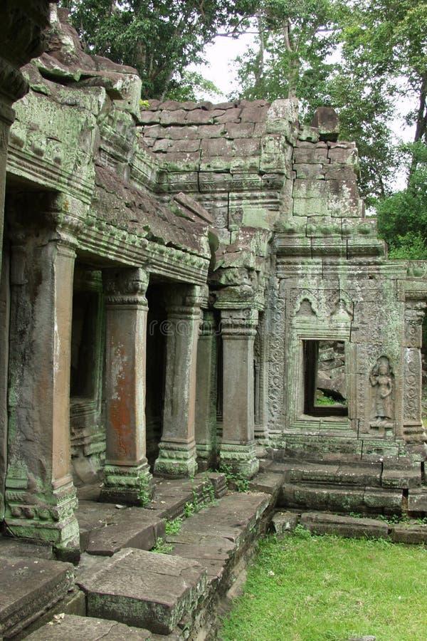 De Tempel van de wildernis - Angkor Wat stock foto