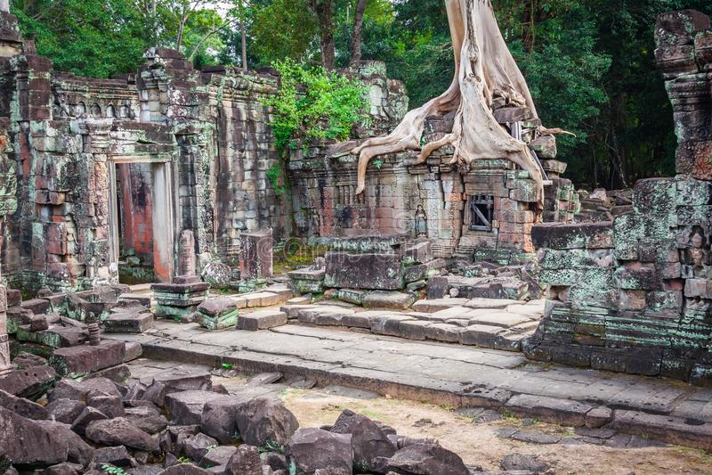 De tempel van Preahkhan, Angkor-gebied, Siem oogst, Kambodja royalty-vrije stock afbeelding