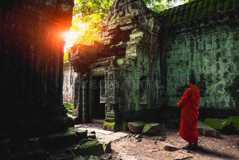 De tempel van Ta Prohm royalty-vrije stock foto