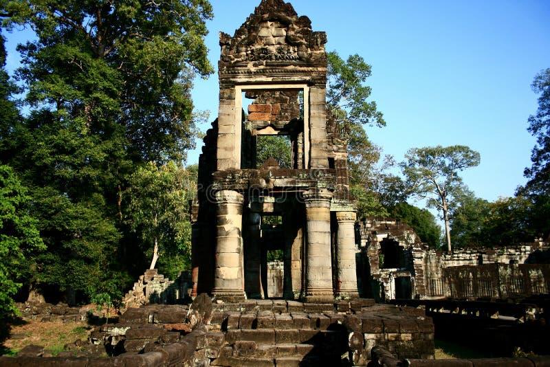 De tempel van Ta Prohm. Kambodja stock foto's