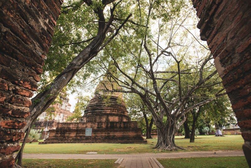 De Tempel van Thailand - Oude pagode in Wat Yai Chai Mongkhon, het Historische Park van Ayutthaya, Thailand royalty-vrije stock afbeeldingen
