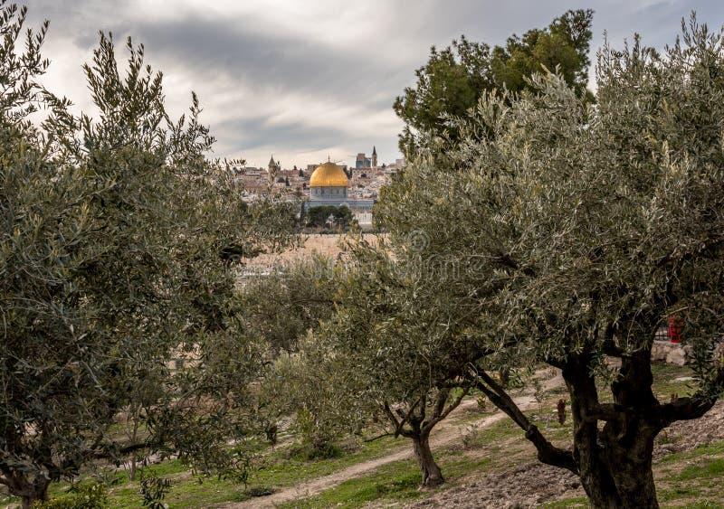De tempel zet met Koepel van de Rots op royalty-vrije stock foto