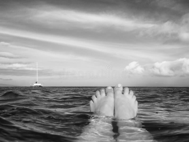 De tenen komen uit het drijven op oceaanoppervlakte met boot op horizon te voorschijn royalty-vrije stock foto's