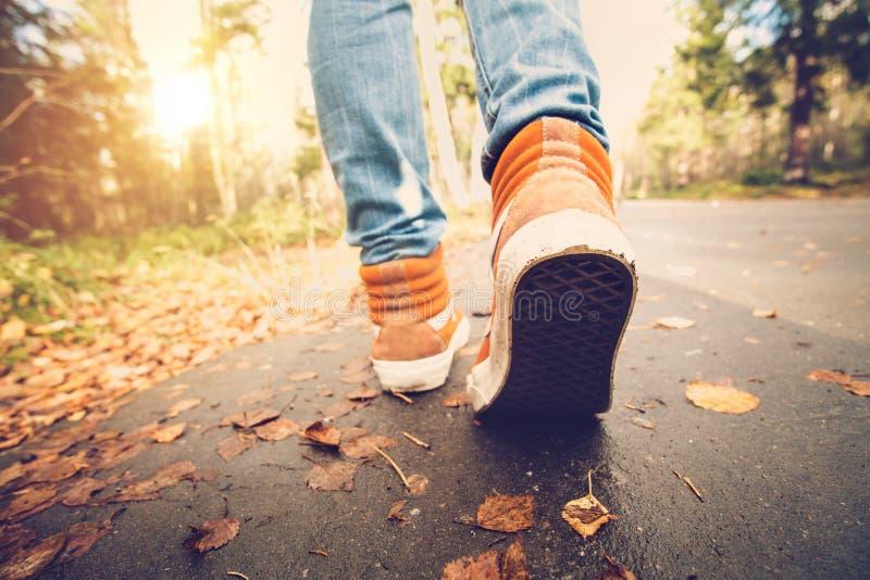 De tennisschoenen die van vrouwenvoeten op dalingsbladeren lopen Openlucht royalty-vrije stock fotografie