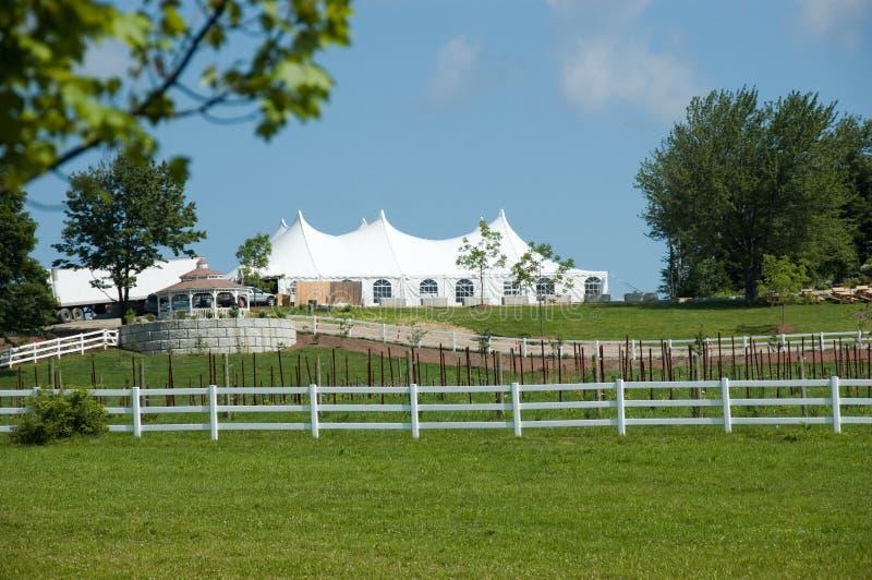 De tent van de wijnmakerij royalty-vrije stock foto's
