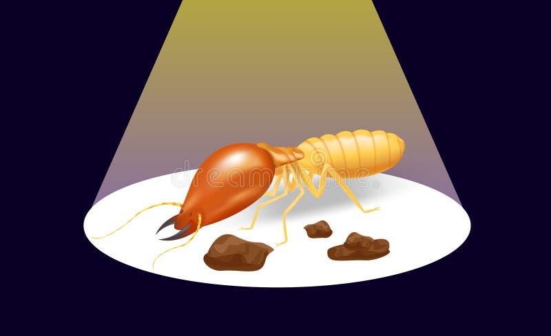 De termiet op de donkere achtergrond en de schijnwerper glanzen, de termietmier gegeten houten bederf van insectspecies en bescha royalty-vrije illustratie