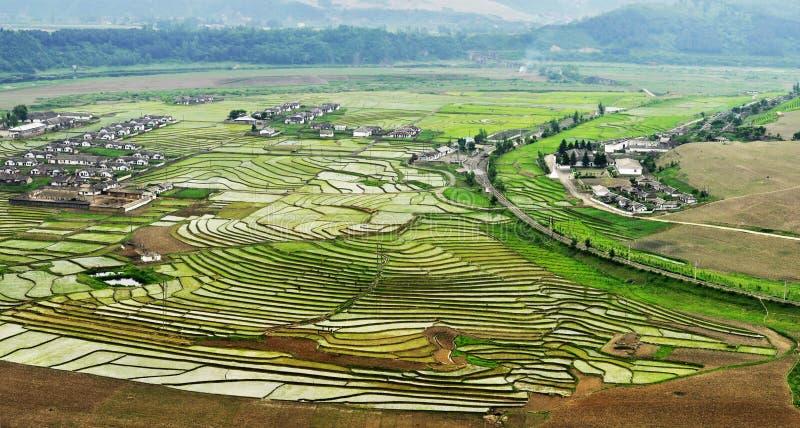 De terrassen van China royalty-vrije stock afbeelding