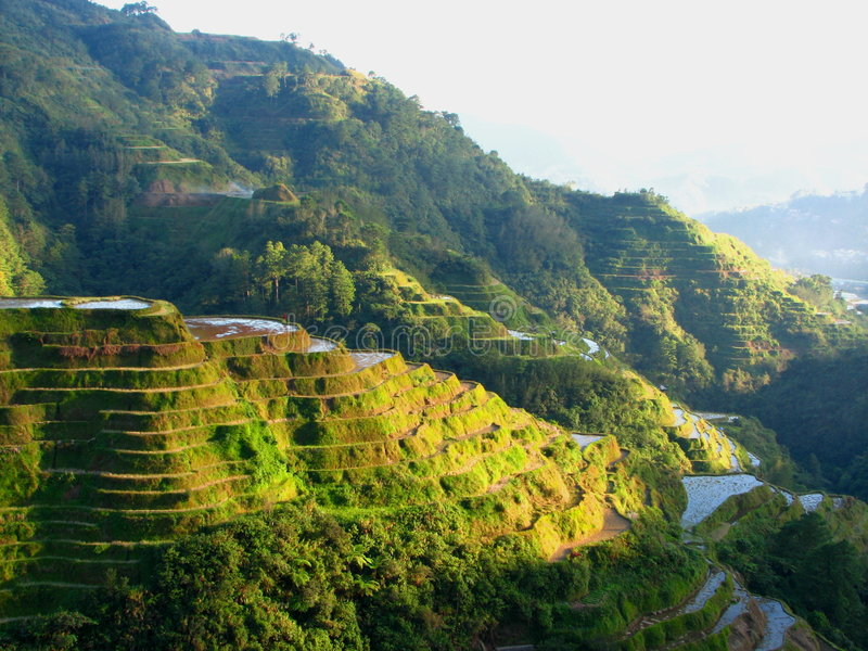De Terrassen van de Rijst van Banaue royalty-vrije stock foto's