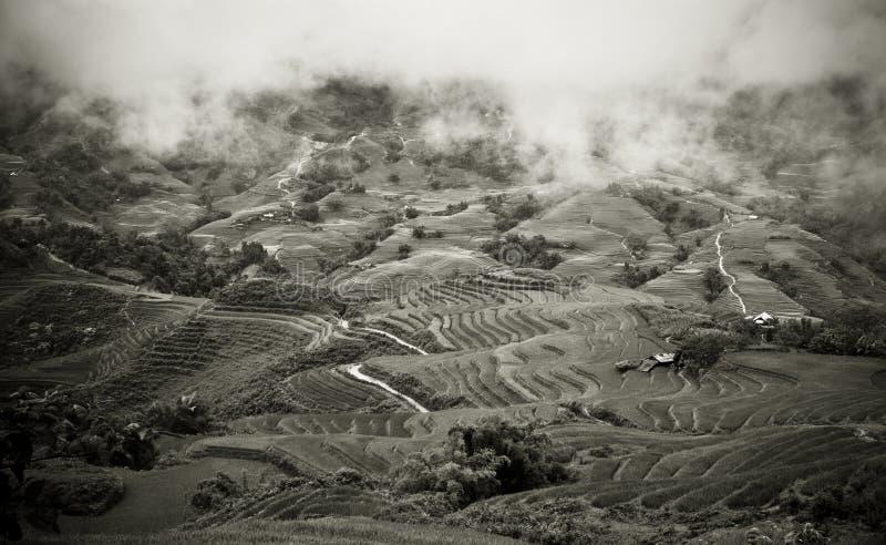 De Terrassen van de Rijst van de berg royalty-vrije stock afbeeldingen