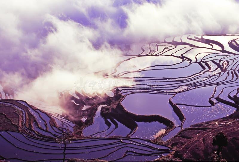 De terrassen van de rijst van yuanyang stock afbeelding