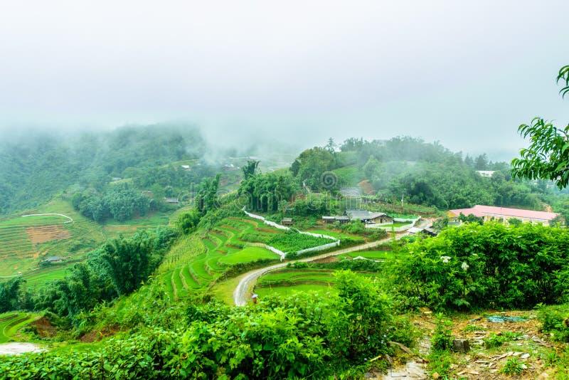 De Terrassen van de Sapa, Vietnam stock foto's
