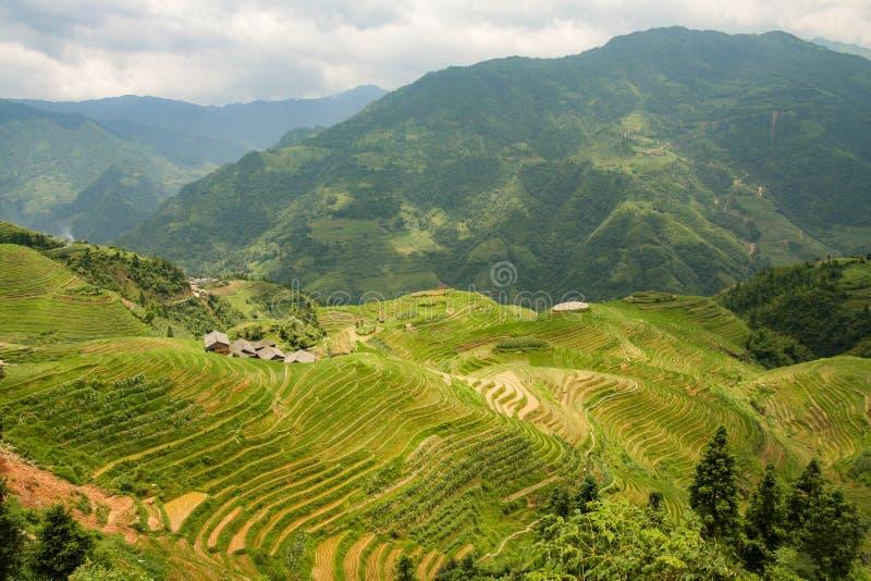 De terrassenlandschap van de Longshengrijst in China royalty-vrije stock foto