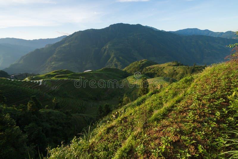 De terrassenlandschap van de Longshengrijst in China stock afbeeldingen