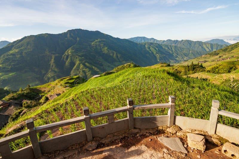 De terrassenlandschap van de Longshengrijst in China stock foto's