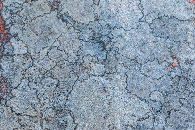 De textuur of de achtergrond van de oude die steenoppervlakte met het korstmos en het mos wordt behandeld royalty-vrije stock foto