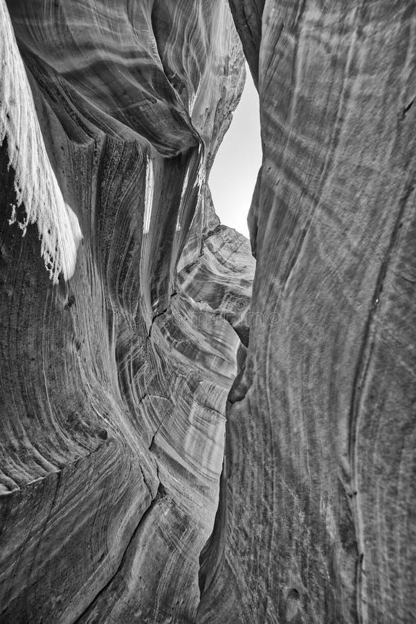 De textuur en de rotsvormingen van de antilopecanion, Arizona royalty-vrije stock afbeeldingen