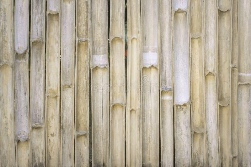 De textuur van de bamboeomheining in verticale patronen, Natuurlijk voor achtergrond, lichtbruine houten muur royalty-vrije stock foto