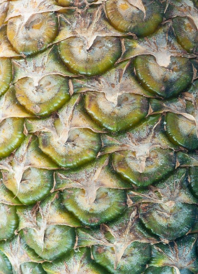 De textuur van de ananas royalty-vrije stock afbeelding