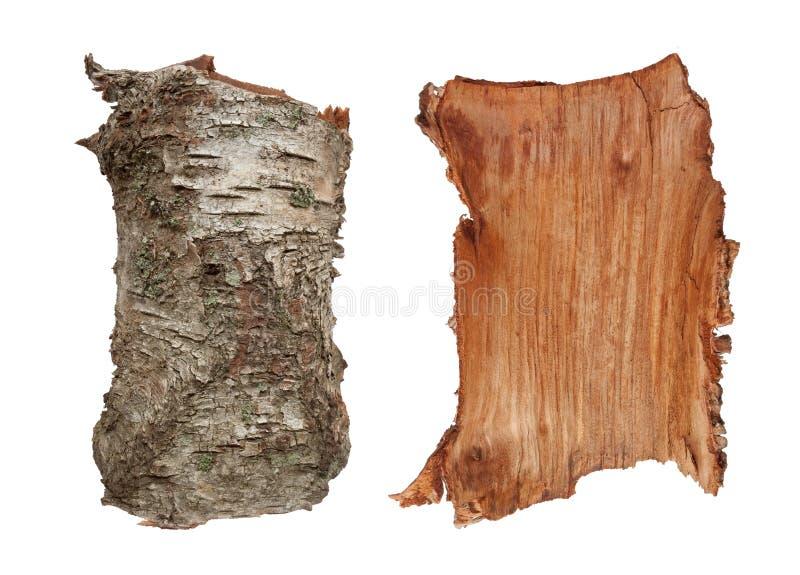 De textuur van de de boomschors van de berk stock afbeeldingen