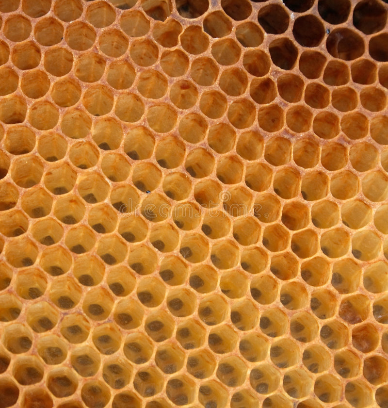 De textuur van de honing zonder honing royalty-vrije stock afbeelding