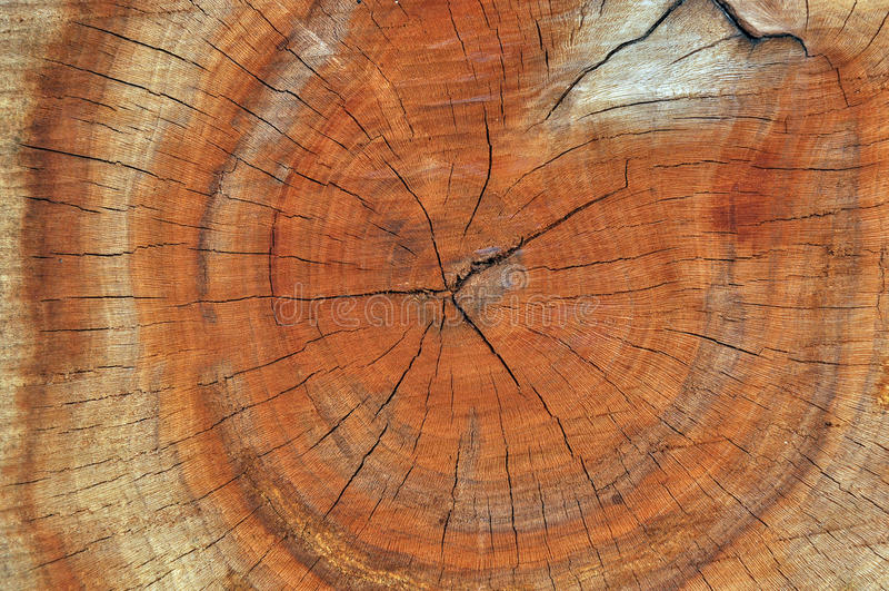 De textuur van de houtsnede royalty-vrije stock afbeelding