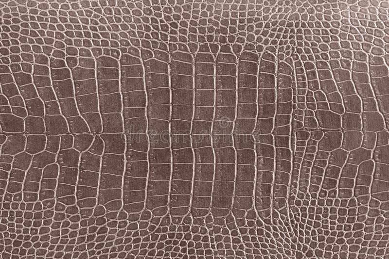 de textuur van de krokodilhuid als behang stock afbeeldingen