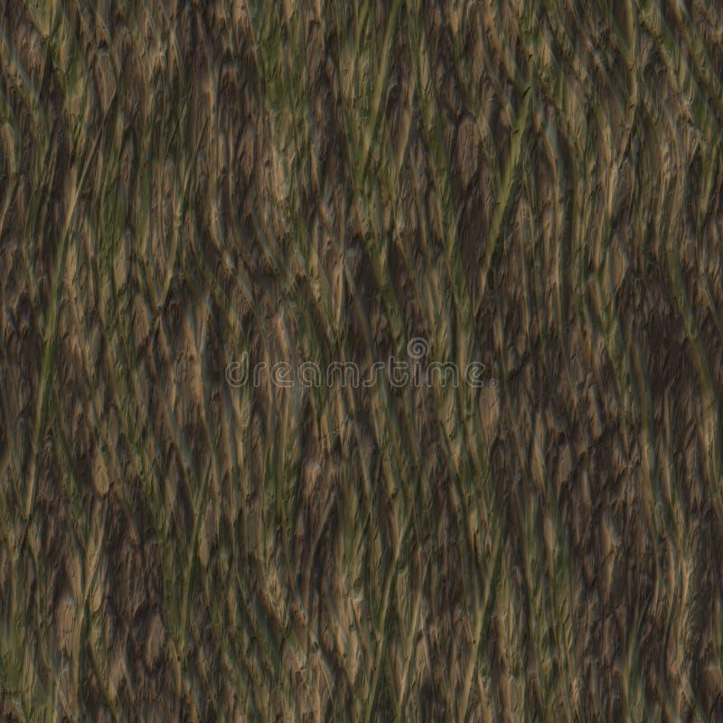 De Textuur van de Schors van de boom stock illustratie