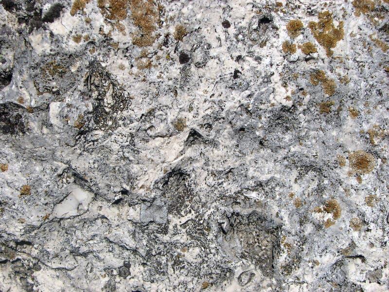 De textuur van de steen Gedetailleerde oppervlakte van de oude lichte steen met rode korstmossen stock fotografie