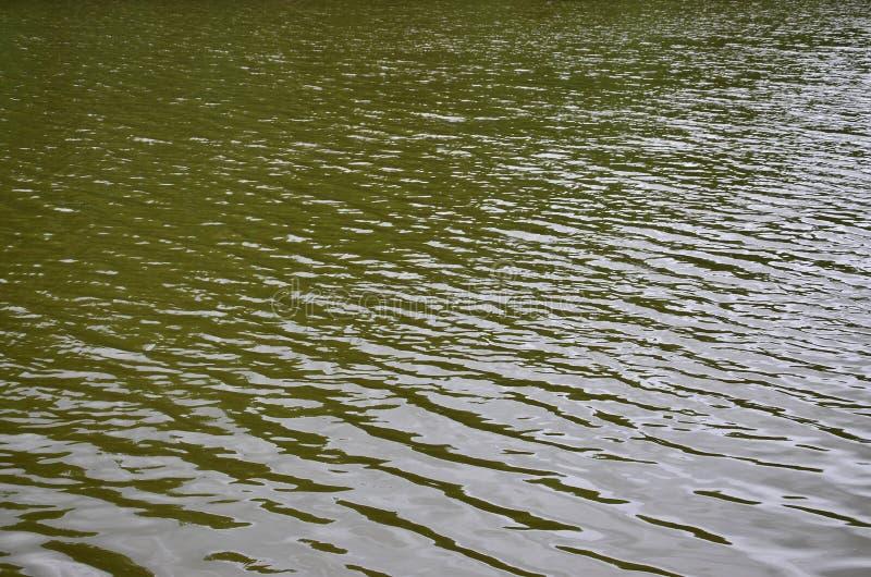 De textuur van donker die rivierwater onder de invloed van wind, in perspectief wordt gestempeld Horizontale imag stock afbeeldingen