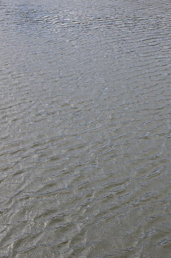 De textuur van donker die rivierwater onder de invloed van wind, in perspectief wordt gestempeld Verticale Imag stock afbeeldingen