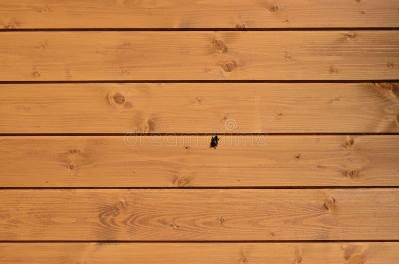 De textuur van doorstane houten muur Oude houten plankomheining van horizontale vlakke raad met kleine bijenzitting op royalty-vrije stock afbeelding