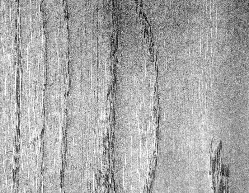 De textuur van een boom met zilver wordt behandeld dat stock foto
