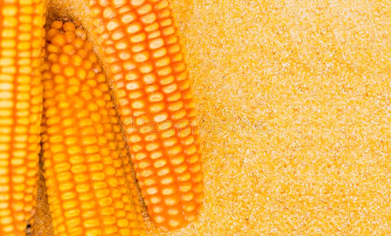 De textuur van graanzaden en maïsbloem Nuttig als achtergrond stock foto