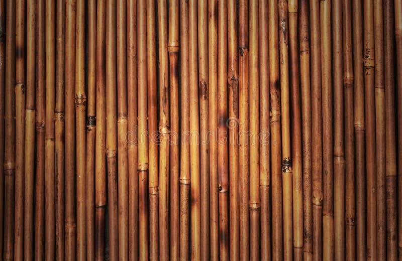 De textuur van het bamboe stock foto