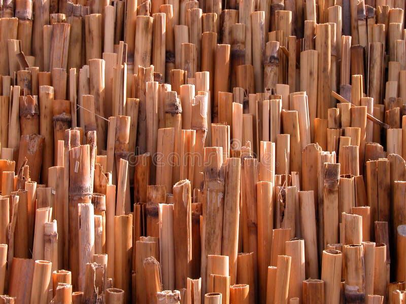 De Textuur Van Het Bamboe Royalty-vrije Stock Afbeelding