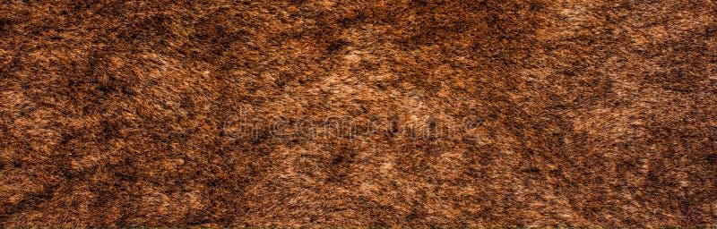 De textuur van het bont royalty-vrije stock foto's