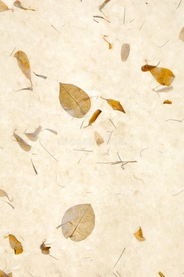 De textuur van het document vector illustratie