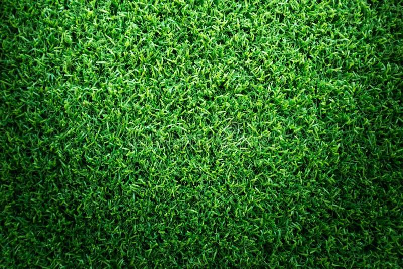 De textuur van het grasgebied voor golfcursus, voetbalgebied of sporten achtergrondconceptontwerp stock foto