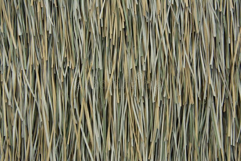 De textuur van het vetiveria zizanoïdesdak royalty-vrije stock afbeelding