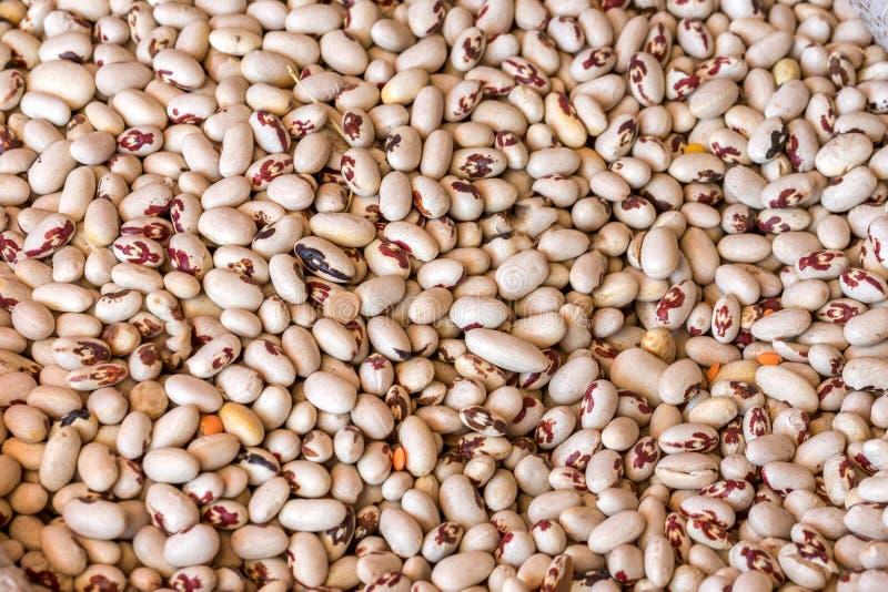 De textuur van het witte bonen gezonde voedsel stock foto's