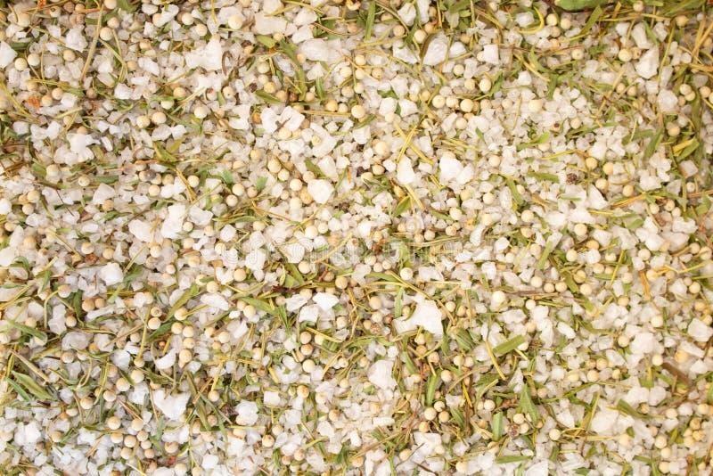 De textuur van kruiden mengt zich en overzees zout close-up, kruid of kruiden als achtergrond Terragon, Overzees zout stock afbeelding