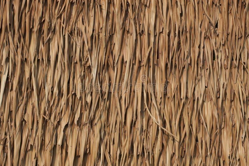 De textuur van met stro bedekt dak royalty-vrije stock afbeeldingen