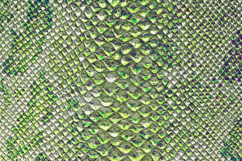 De textuur van slanghuid stock foto