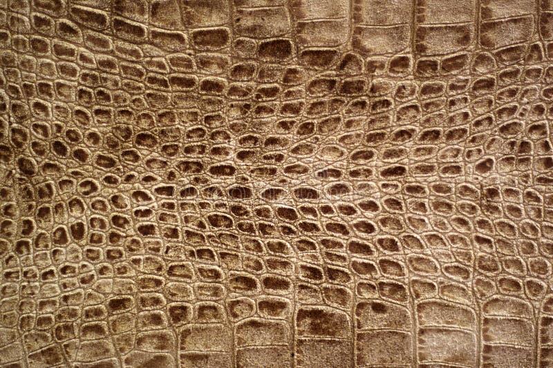 De textuur van Snakeskin of van de krokodil stock fotografie