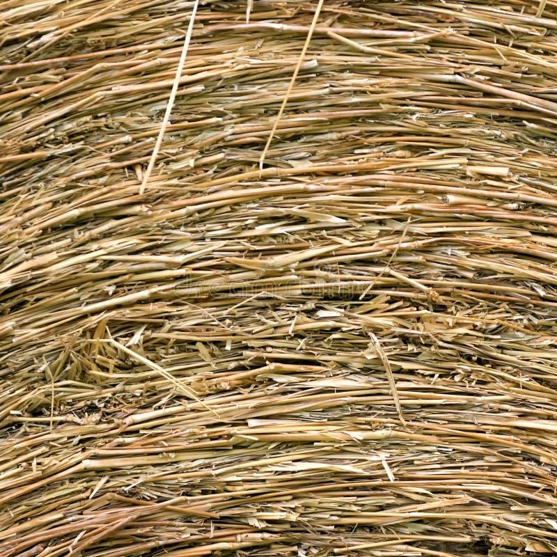 De textuur van strobalen stock afbeeldingen