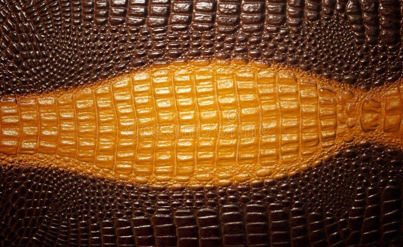 De textuurachtergrond van de krokodilhuid stock afbeeldingen